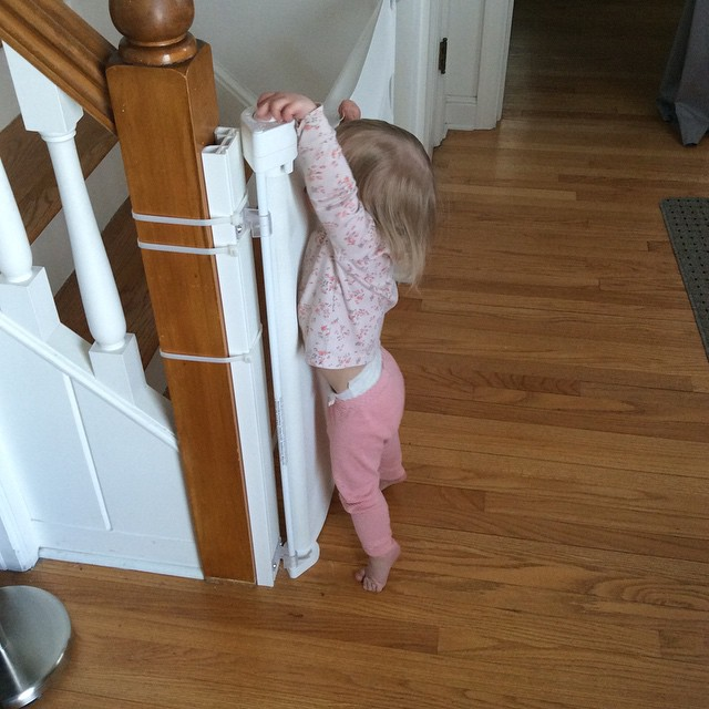 Mia Undoing the Baby Gate